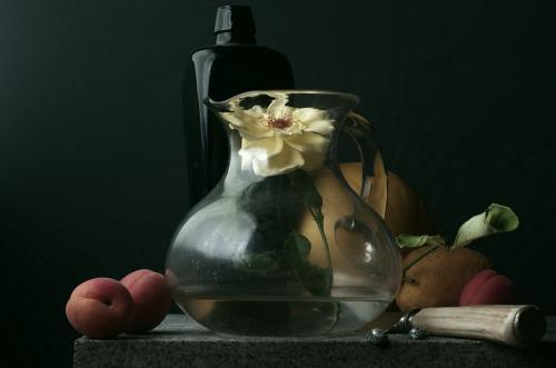 Still Life with single Rose