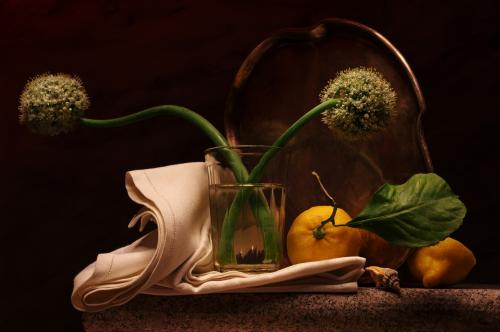 Still life with Allium